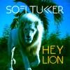 Hey Lion - Single, Sofi Tukker