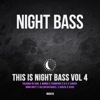 This is Night Bass, Vol. 4