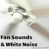 Box Fan Sound on High Power