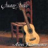 Juan Areco - Aires Flammenco artwork