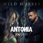Wild Horses (feat. Jay Sean) - Single