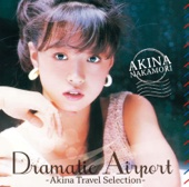 Dramatic Airport - Akina Travel Selection