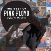Pink Floyd - A Foot In the Door: The Best of Pink Floyd Grafik