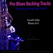 [Descargar Mp3] Pro Blues Backing Tracks (South Side Blues in F) [12 Blues Choruses With Tips for Alto Saxophone Players] MP3