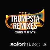 Trumpsta (Djuro Remix) [feat. Treyy G]