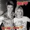 Iggy & Ziggy - Cleveland '77 (Live), Iggy Pop