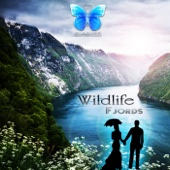 Wildflowers (Solo Piano Mix) - Wildlife
