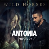 Wild Horses (Remixes) [feat. Jay Sean] - EP