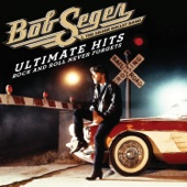 Ultimate Hits - Rock and Roll Never Forgets