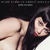 Adore You (Remix) - Single