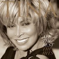 All the Best: The Hits - Tina Turner