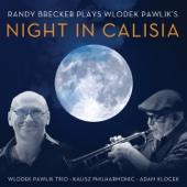 Amber Road (feat. Wlodek Pawlik Trio & Kalisz Philharmonic Orchestra)