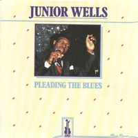 WELLS, Junior - I'll Take Care Of You