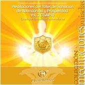 TSAP 2 - Taller de Sanación de Abundancia y Prosperidad, Vol. 2