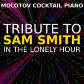 Tribute to Sam Smith: In the Lonely Hour