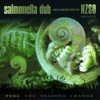Feel the Seasons Change (Live In Concert) [with the NZSO], Salmonella Dub