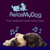 Pet Relaxation - Music to Relax Dogs and Encourage Sleep - Fight Against Separation Anxiety
