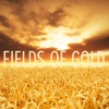 Fields of Gold (feat. Lindsey Stirling) - Single, Peter Hollens & Tyler Ward