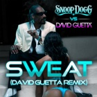 SNOOP DOGG & DAVID GUETTA Sweat