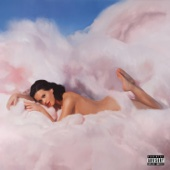 Teenage Dream - Katy Perry Cover Art