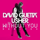 Without You (Remixes) [feat. Usher] - EP cover art