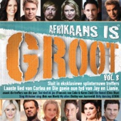 Afrikaans Is Groot, Vol. 8 - Various Artists