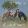 Intended - Single