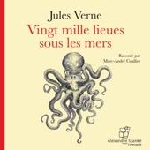 Vingt mille lieues sous les mers - Jules Verne