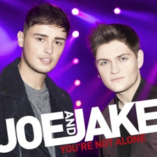 You're Not Alone by Joe and Jake
