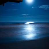 Beethoven Moonlight Sonata with Relaxing Nature Sounds
