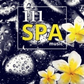 111 Spa Music: Sound Therapy for Relaxation, Massage, Tranquility & Serenity, Healing Nature Sounds