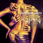 Kiss This - The Struts Cover Art