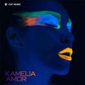 Amor (Radio Edit)