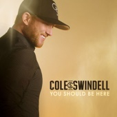 Flatliner (feat. Dierks Bentley) - Cole Swindell Cover Art