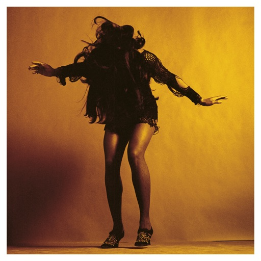 Miracle Aligner - The Last Shadow Puppets