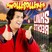 Snollebollekes - Links Rechts kunstwerk