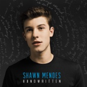 Shawn Mendes - Stitches artwork