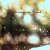 Nature Sound: Sound of Raining, Pt. 1