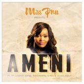 Ameni (feat. Emtee, Fifi Cooper, B3nchMarQ, Sjava & Saudí)