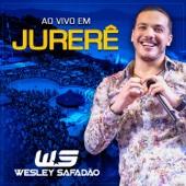 Wesley Safadão - A Dama e o Vagabundo (Ao Vivo)  arte