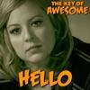 Hello - Parody of Adele