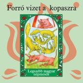 Forró Vizet A Kopaszra (Legszebb Magyar Népmesék) - EP