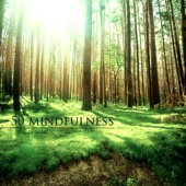 50 Mindfulness - Best Yoga Meditation and Relaxation Music for Breathing Exercises, Relaxation Techniques for Anxiety and Depression