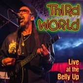 Live at the Belly Up - Third World