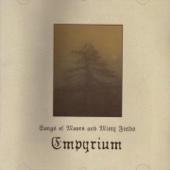 Empyrium - The Blue Mists of Night  artwork