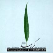 Mohammad Reza Lotfi - Geryeye Bid (Live) artwork