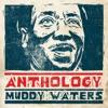 Anthology, Muddy Waters
