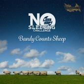 No Sleeping Challenge - Bandy Counts Sheep