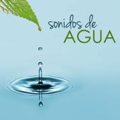 Sonidos de Agua - Sonido Natural del Mar y Música Relajante para Spa