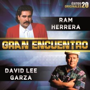 David Lee Garza - Gran Encuentro (20 Éxitos Originales)